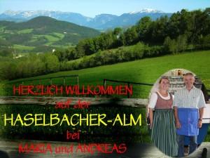 Haselbacher-Alm